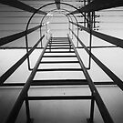Stairs by Diana Forgione