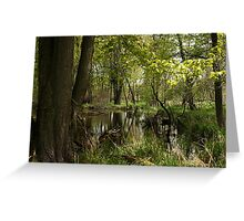 White River Landscape 6748 Greeting Card