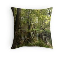 White River Landscape 6748 Throw Pillow