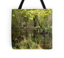 White River Landscape 6749 Tote Bag
