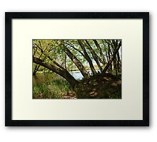 "White River Marsh ""Highlands"" 6778 Framed Print"