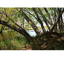 "White River Marsh ""Highlands"" 6778 Photographic Print"