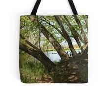 "White River Marsh ""Highlands"" 6778 Tote Bag"