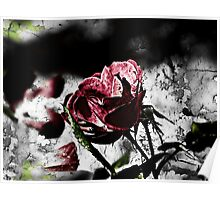 """""""And he repents in thorns that sleep in beds of roses"""" - Francis Quarles Poster"""