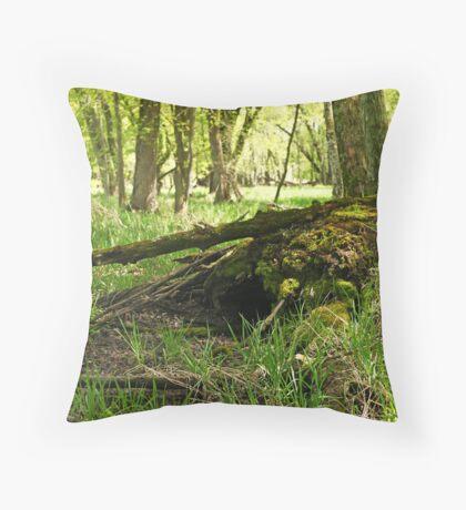 White River Marsh Landscape 6782 Throw Pillow