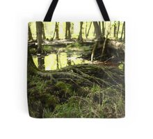 White River Marsh Landscape 6799 Tote Bag