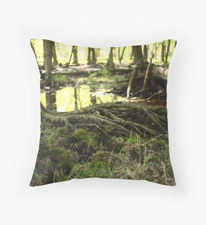 White River Marsh Landscape 6799 Throw Pillow