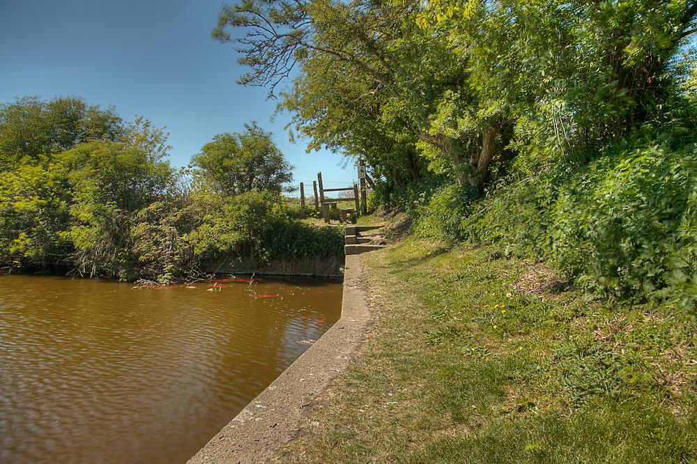 Bempton village pond. by Kit347