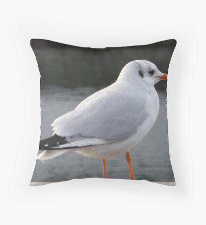Swiss Gull Throw Pillow