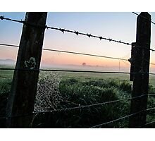 misty rural scene Photographic Print