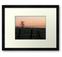 fog on the farm Framed Print