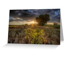 Light Field Greeting Card