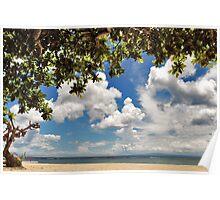 Tropical enjoyment Poster