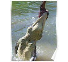 A Saltwater Crocodile Bite Poster