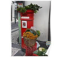 Mailbox Madeira Poster