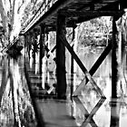 Boardwalk Over the Lagoon at Moama by Julie Sleeman