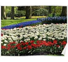 Most Captured Garden Poster