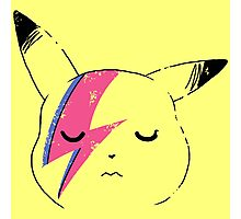 Pika stardust Photographic Print