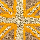 Curried Flag by Anne Gilbert