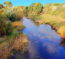 Beautiful Tasmania - the river at Richmond by georgieboy98