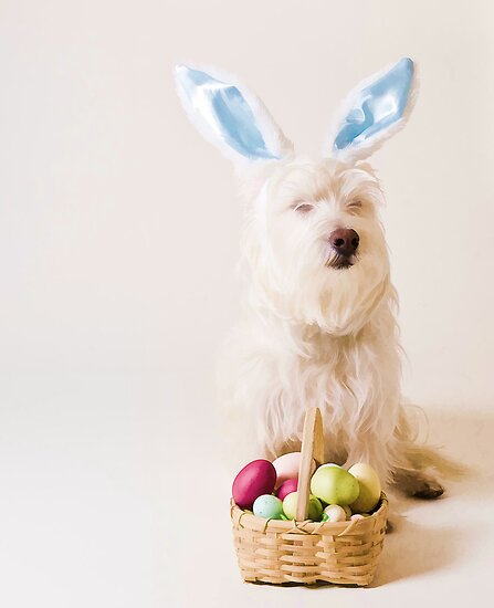 Easter Bunny Westie by Edward Fielding