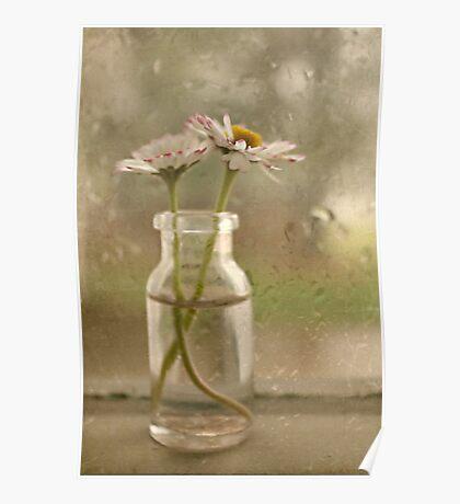Rainy Day Daisys Poster