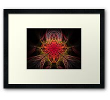 Red Iris Framed Print