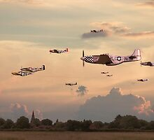 P51 Mustang  - Home to Roost by Pat Speirs