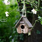 Love Nest by Gabrielle  Lees
