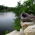 Lake Pickens, Sherman, Texas, USA by aprilann
