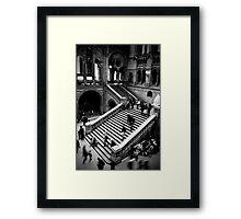 Motion - Natural History Museum Framed Print