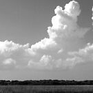 Thunderclouds over the Marsh by Peggy Berger