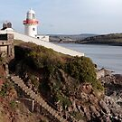 lighthouse with steps down to rocky beach during a sunny day by morrbyte