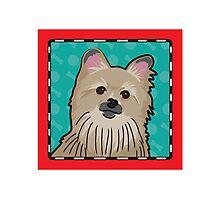 Pomeranian Cartoon Photographic Print