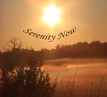 Serenity Now by Sonya Lynn Potts