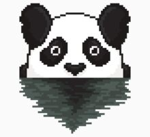 A Curious Panda by iSpeakRetro