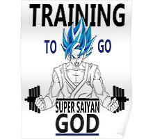 Training to go Super Saiyan God Poster