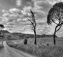 Take me Home Country Roads - Somewhere Near Oberon (Monochrome) - The HDR Experience by Philip Johnson