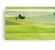 Rolling green hills with trees Photographed in Umbria, Italy Metal Print