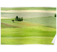 Rolling green hills with trees Photographed in Umbria, Italy Poster