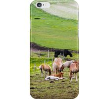 horses graze in the rolling green hills with trees Photographed in Umbria, Italy iPhone Case/Skin