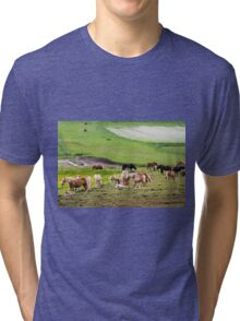 horses graze in the rolling green hills with trees Photographed in Umbria, Italy Tri-blend T-Shirt
