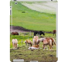 horses graze in the rolling green hills with trees Photographed in Umbria, Italy iPad Case/Skin