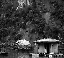Floating Village by Pat Lynch
