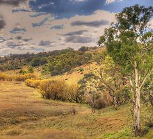 Seasons - Somewhere Near Oberon, NSW - The HDR Experience by Philip Johnson