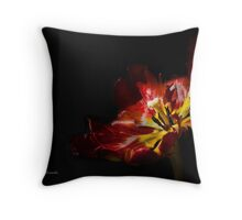 Gleam With Luster Throw Pillow