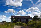 Derelict Barn by Nigel Bangert