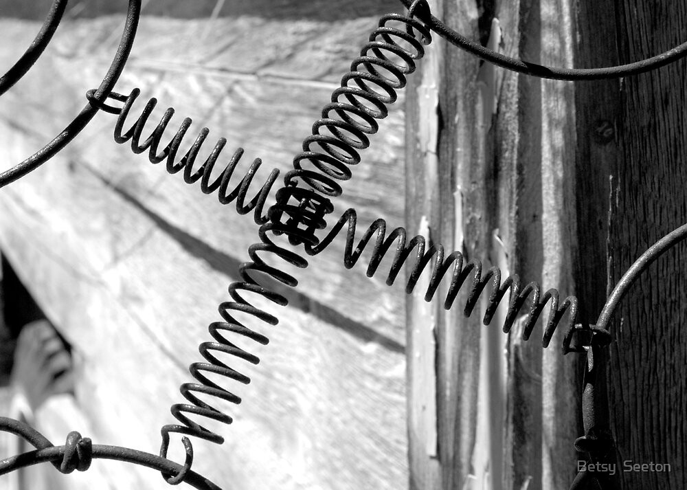 DREAM WIRE (thanks to Dennis for this clever name) by Betsy  Seeton