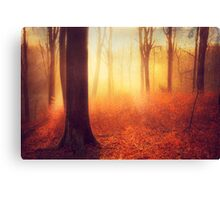bright beginning Canvas Print