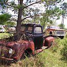 TREE FORD by bulldawgdude